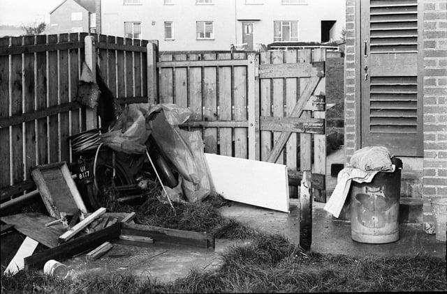 NOVEMBER 1971... The Thompson family's garden at Rathlin Gardens.