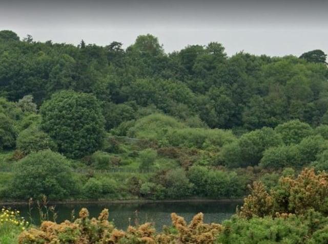 Creggan Country Park