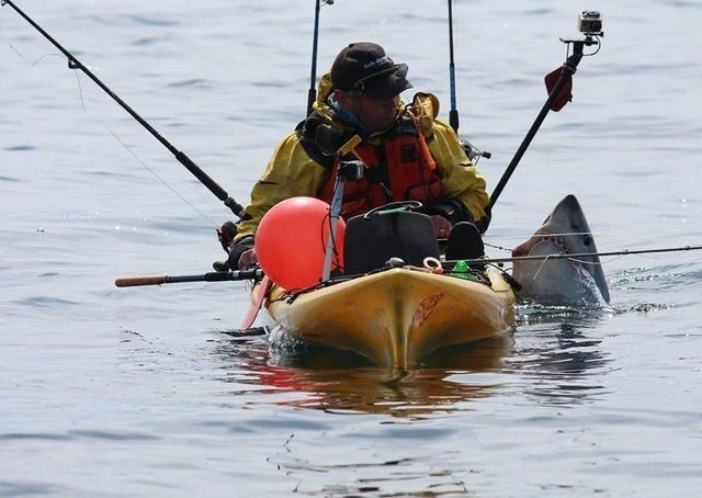 Kayak angler Graham Smith from Moville with a Porbeagle on a previous expedition. (Picture by Martin Moloney)