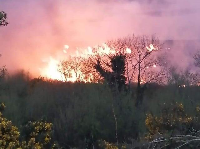 The fire was set on mudflats near Strathfoyle.