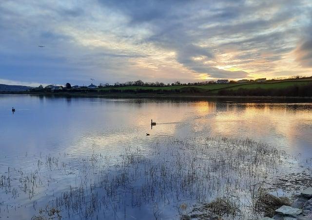A swan glides along Inch lake.