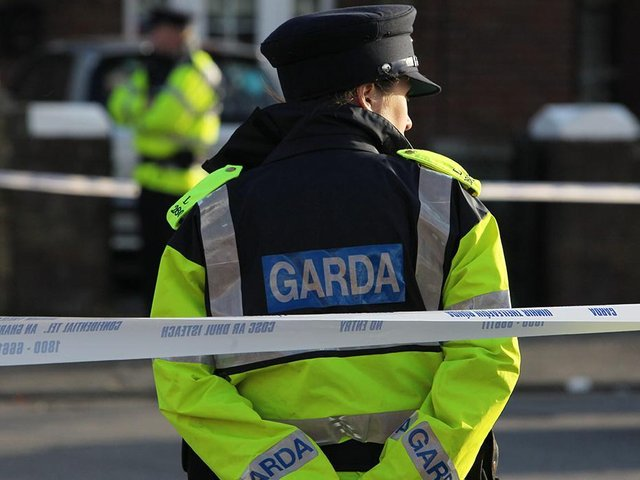 Gardai have launched an investigation into the death of a three month old baby girl after she was attacked by a dog.