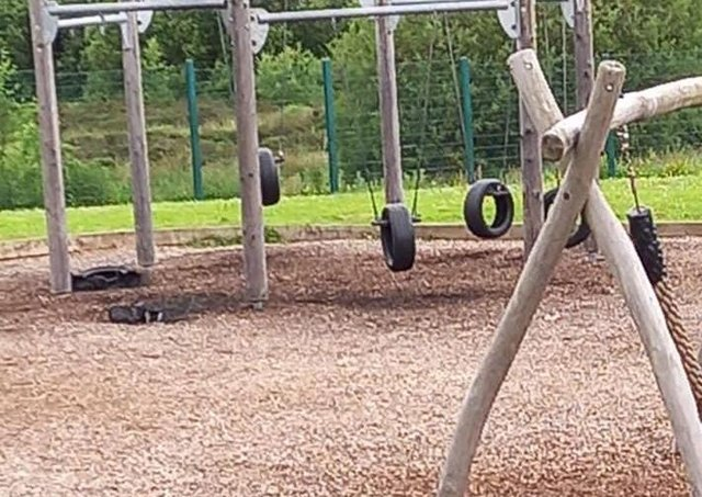 Incinerated tyre swings at the park this morning.